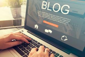 o que e blog de nicho